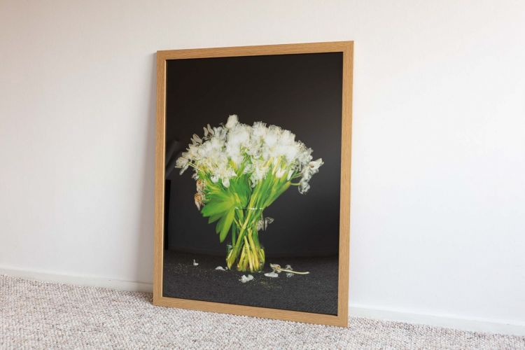 White Tulips shot over 14 days framed in wood frame
